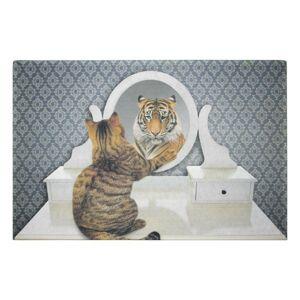 Originální rohožka před dveře s motivem kočky se zrcadlem - 75*50*1cm