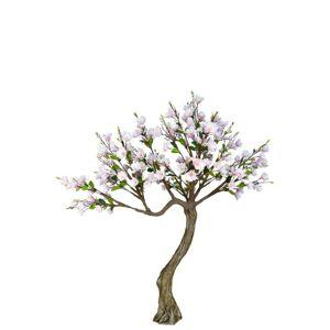 Rozkvetlý strom Magnolie - 260*260*260cm