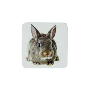 Sada 6ks korkové podtácky s králíčkem Rabbi  - 10*10*0,4cm