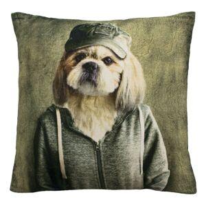 Sametový polštář mr. Dog  - 50*50*15cm